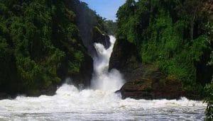https___blogs-images.forbes.com_adriennejordan_files_2019_07_murchison-falls-national-park-uganda